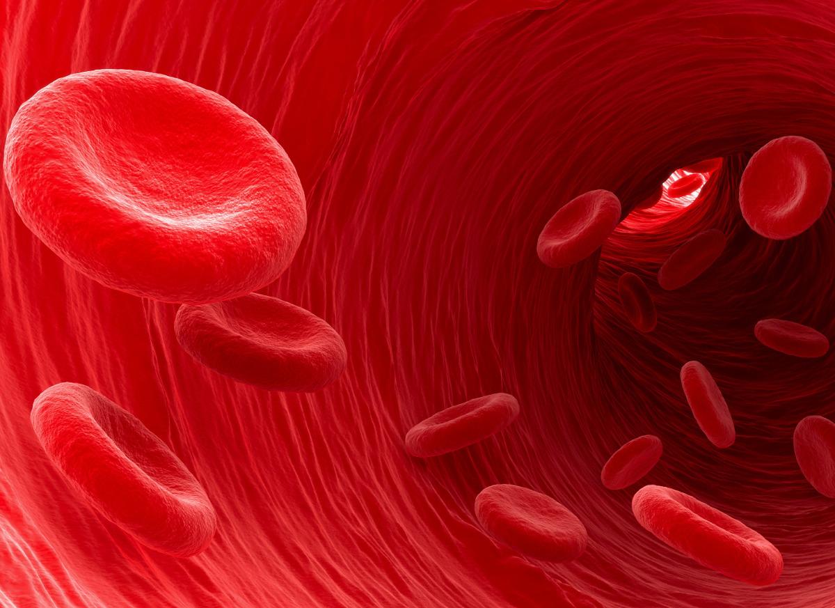 modena-autoanalisi-sangue
