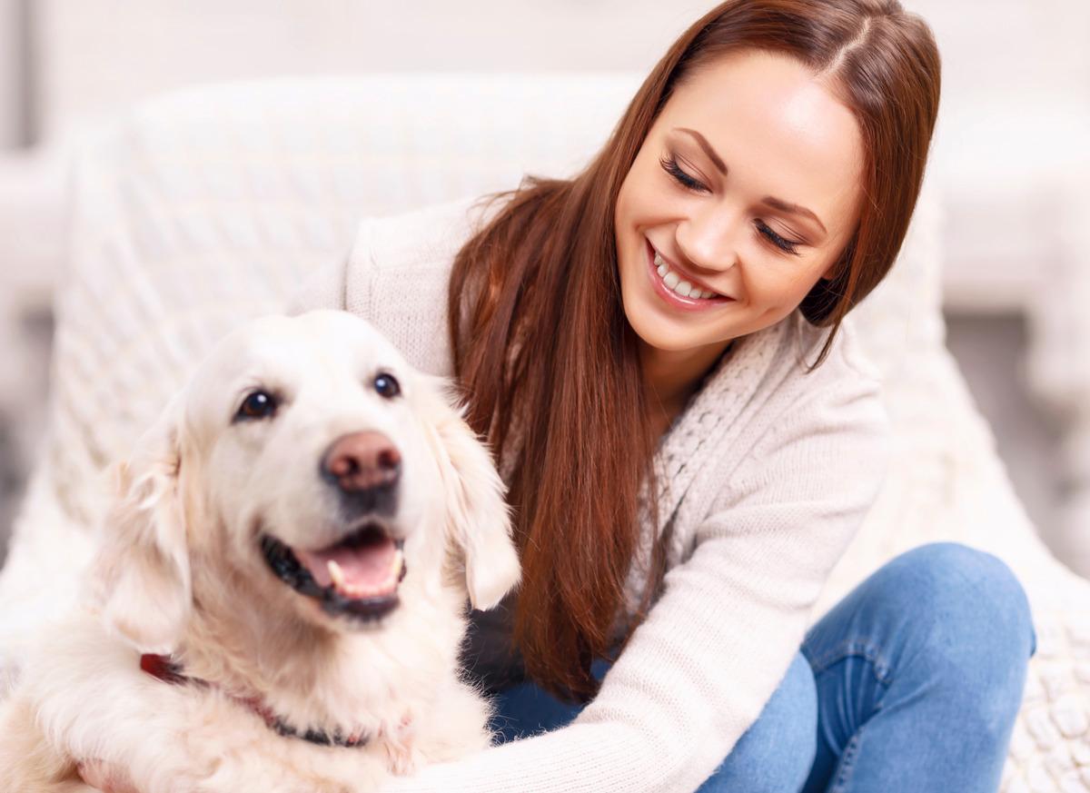 modena-veterinaria